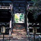 Kibune/Kurama Nature - Kyoto, Japan by IkuTree