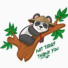 Sleepy Panda: Not Today Thank You by matomatonuk