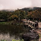 Maruyama Park in the Rain - Kyoto, Japan by IkuTree