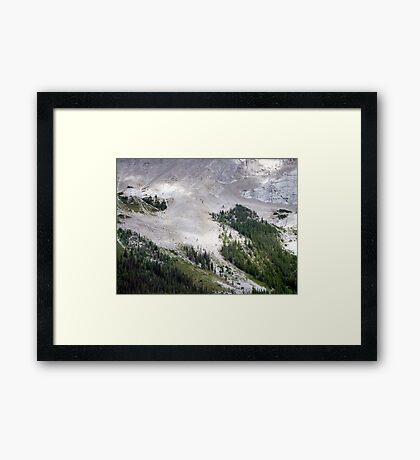 Forest Foothold Framed Print