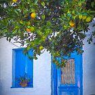 Blues and Oranges by Viv Thompson