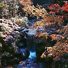 Momijidani Park - Miyajima, Japan by IkuTree