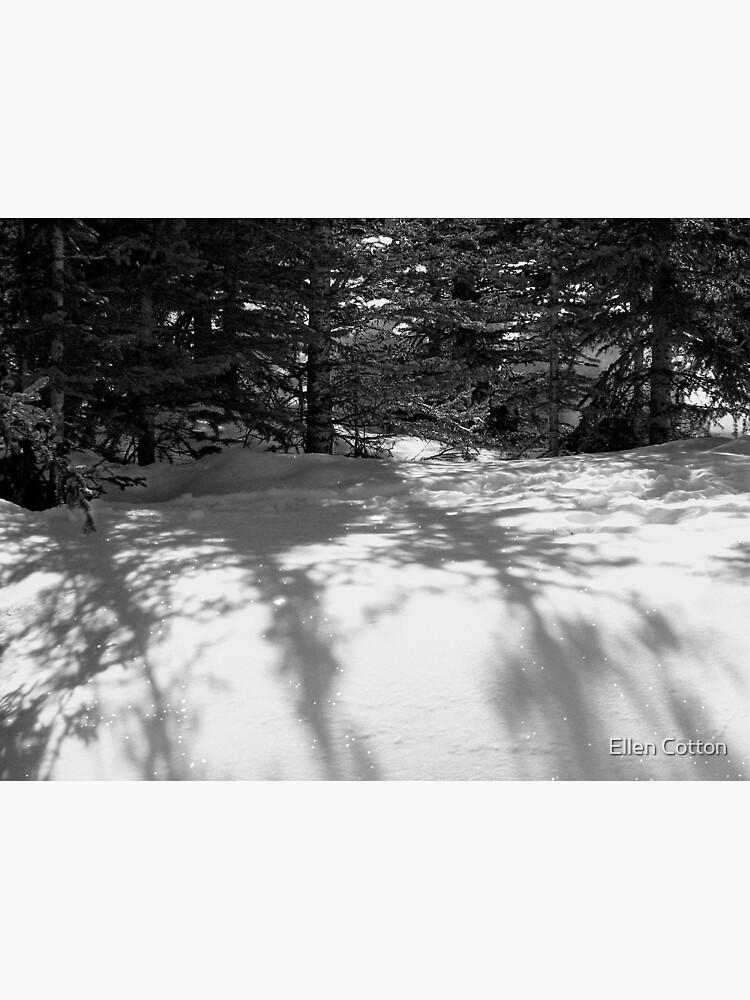Snowbank 2 by ellcot