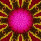 flower Mandala by medley