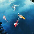 Fish & Sky - Tokyo, Japan by IkuTree