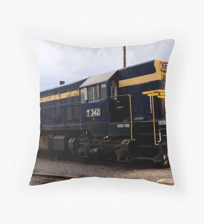 T 342 Throw Pillow