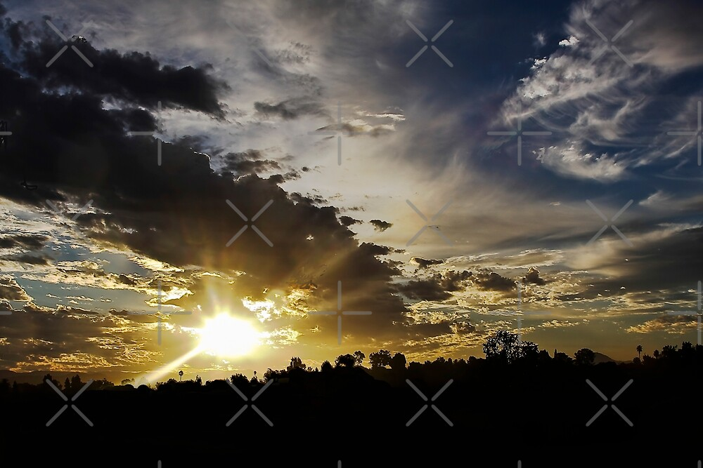 Last Rays by Heather Friedman