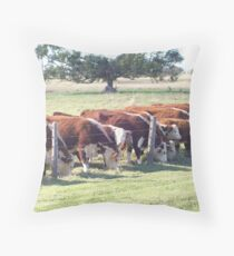Herd of Cattle Sticking Together. Throw Pillow