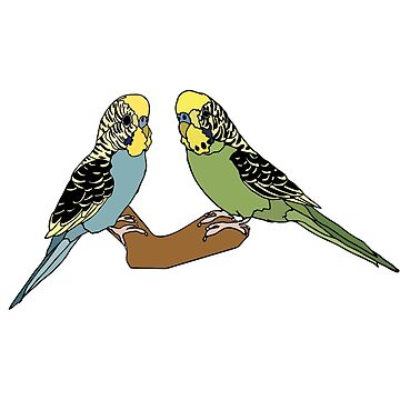 Budgies by nolessjess