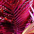 Magenta and Orange Palm Tree Leaves by juggleelephants