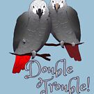 Congo and Timneh African Grey Parrot DoubleTrouble by einsteinparrot
