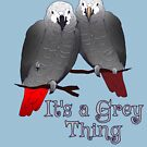 Congo and Timneh African Grey Parrot It's A Grey Thing by einsteinparrot