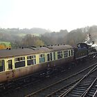Autumn in the Severn Valley by Rorymacve