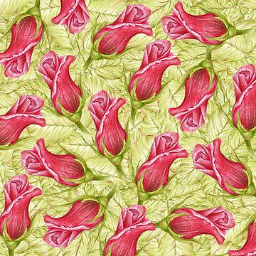 pattern leaves and roses. color pencil by lisenok