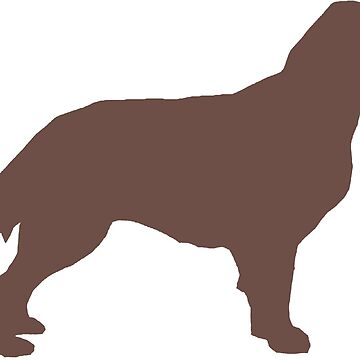 flat coated retriever liver silhouette by marasdaughter