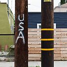Two Poles (USA) by joshsteich