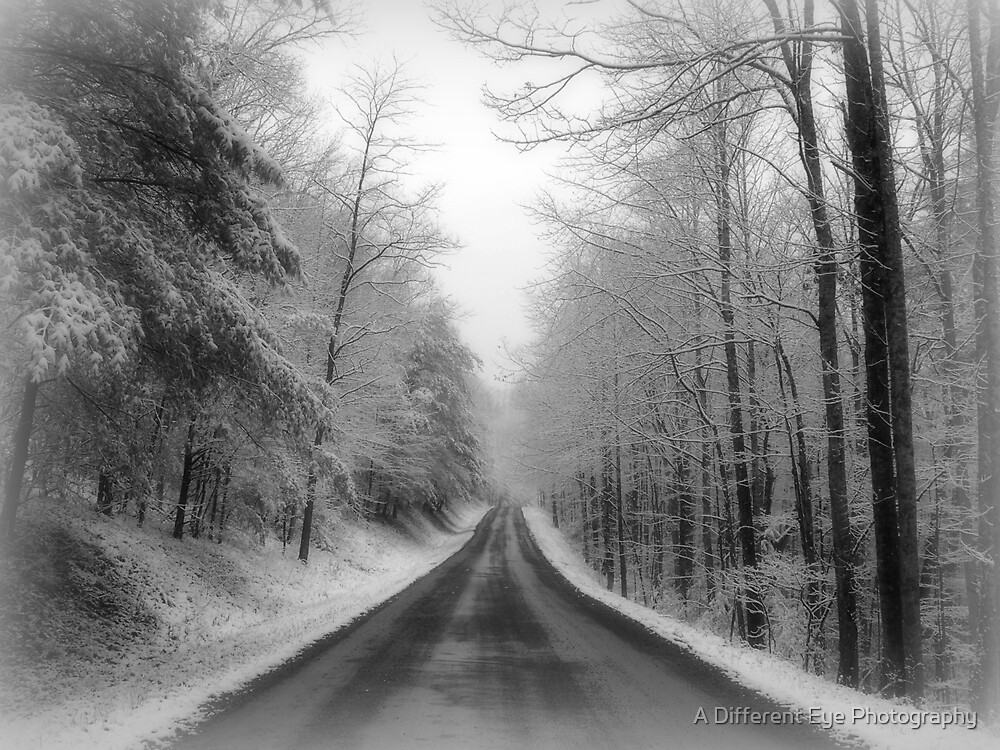 Drive or Dream? by Heather A McGhee