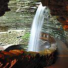 New York's Watkins Glen XIII by PJS15204