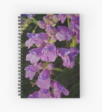 Penstemons with Morning Dew Spiral Notebook