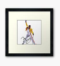 Freddie Framed Print