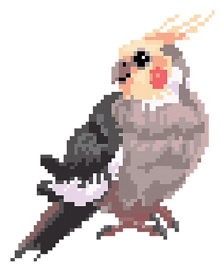 """""""Pixel Cockatiel Test"""" Poster By Shalmons"""