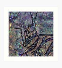 Lepidoptera 1 Art Print