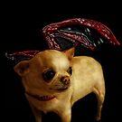 Hell Hound by Heather Haderly