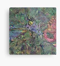 Lepidoptera 3 Metal Print