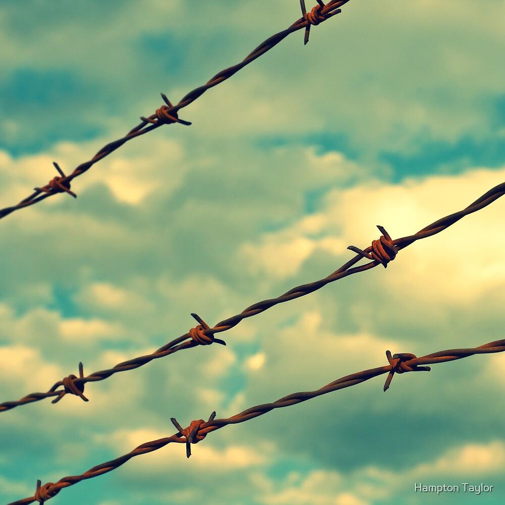 Barbed Wire, Blue Sky - Birmingham, Alabama by Hampton Taylor