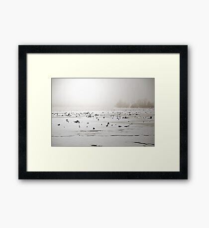 Whitelight Framed Print