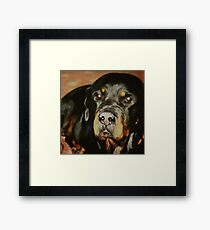 Dogs Lover Rottweiler Pet Portrait Framed Print
