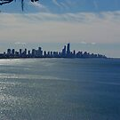 Surfers Paradise  by gillyisme53