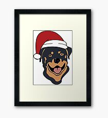 Rottweiler dog wears Santa cap Framed Print