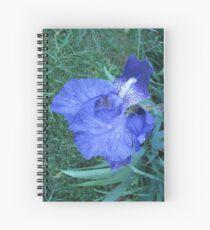 Rain Drops Spiral Notebook