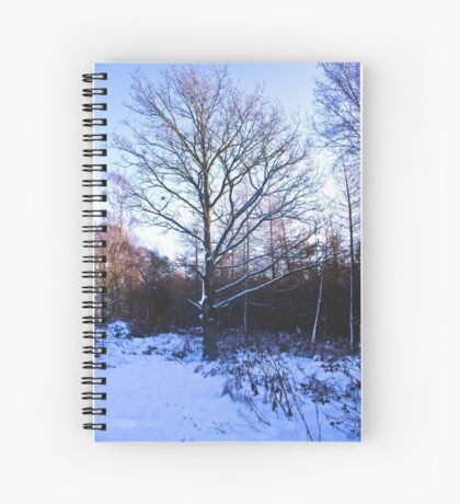 Snow in the Woods Spiral Notebook