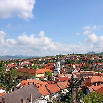 Eger church and houses cityscape by goceris
