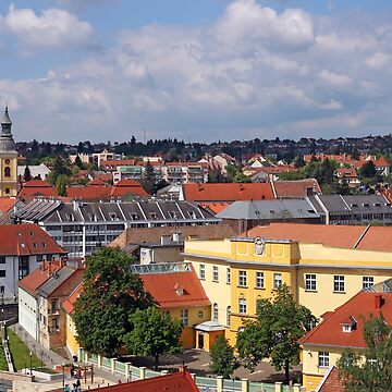 old buildings houses and church Eger Hungary cityscape by goceris