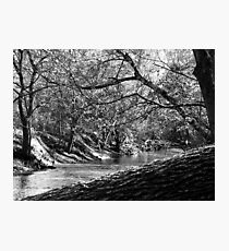 Bluegrass Creek River Photographic Print