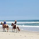 horses on the beach...OBX North Carolina by Jan Stead JEMproductions