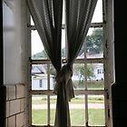 through the window #5 by jbiller