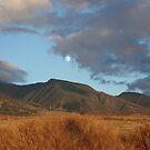 moon over lahaina by Shauna Stannard