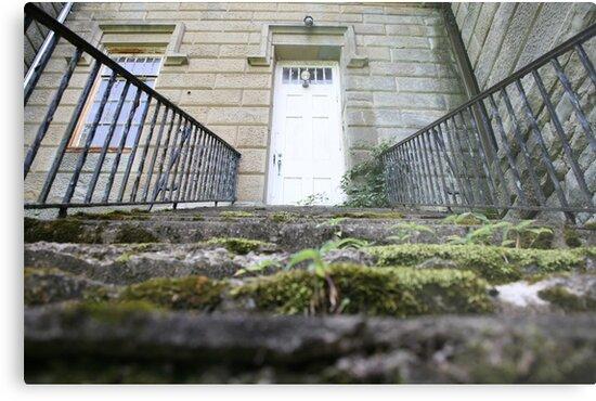 moss covered steps by jbiller
