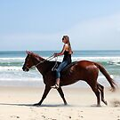 beach rider - OBX NC by Jan Stead JEMproductions