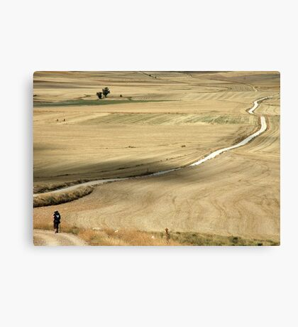 On the road to Compostela Canvas Print