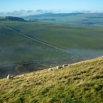 Moorfoot Hills (1) by procrest