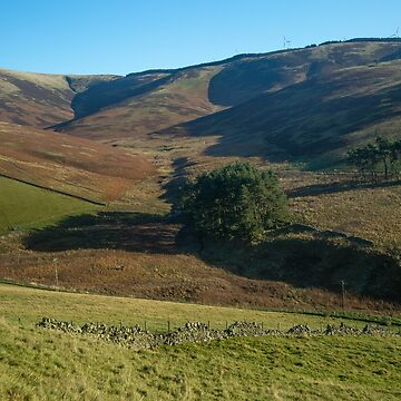 Moorfoot Hills (2) by procrest
