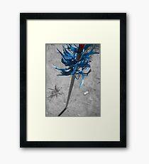 Flu-Flu Framed Print