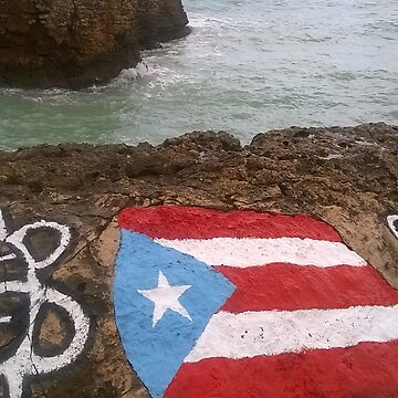 Puerto Rico Flag Taino Painting by photozrus