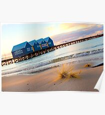 dune grass and the Busselton Jetty Poster