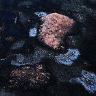 Granit Rocks ... by Angelika  Vogel